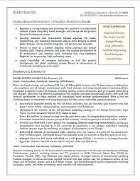 sample marketing executive resume education skills graphic