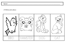 14 best images of pet animal worksheets preschool pets preschool