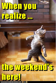 Meme Weekend - lolcats weekend lol at funny cat memes funny cat pictures
