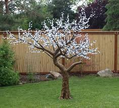 outdoor lighted cherry blossom tree 24 best led cherry trees images on pinterest cherry blossom tree