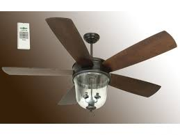 Remote For Ceiling Fan And Light Outdoor Ceiling Fan With Light And Remote Fpudining For Awesome