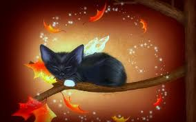 1080p halloween video background halloween fall wallpapers group 65