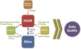 data registries the national cardiovascular data registry ncdr data quality