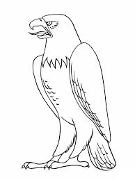 birds of prey coloring pages bestofcoloring com