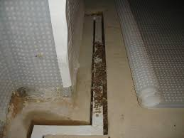 basement and cellar waterproofing dampcoursing ltd the only