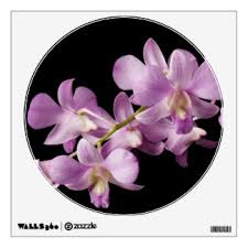 Black Orchid Flower Orchid Flower Wall Decals U0026 Wall Stickers Zazzle
