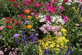 flower garden design home design ideas