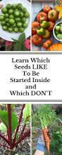 272 best seed propagation images on pinterest organic gardening