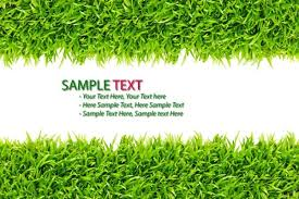 green grass background 02 hd pictures free stock photos in image