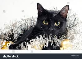cute black cat christmas ornaments stock photo 91148462 shutterstock