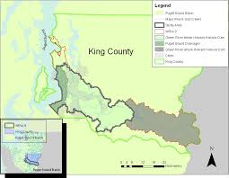 king county native plants king county encyclopedia of puget sound