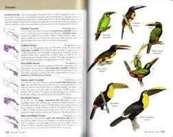 book review the birds of costa rica a field guide nature
