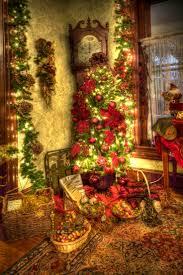 253 best christmas lights u0026 christmas tree images on pinterest