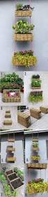 beautiful hanging basket garden diy green thumb pinterest