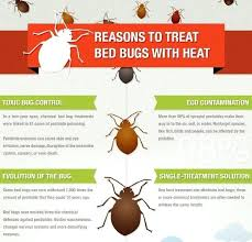 natural bed bug remedies what gets rid of bed bugs remedies for bed bugs diy get rid of bed