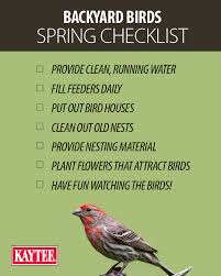 Backyard Wild Birds Backyard Birding Spring Checklist