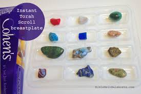 breastplate stones pigs in a breastplate parsha or torah project bible belt balabusta