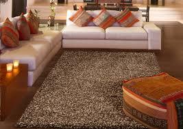 floor smooth shag area rugs for nice interior floor decor ideas
