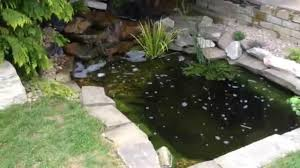 how to build a natural looking garden fish pond with waterfall