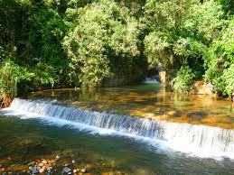 cascada bola de oro coatepec veracruz méxico paisajes pinterest