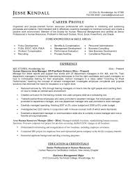 Resume Templates For Entry Level Jobs Director Of Human Resources Resume Samples Sam Peppapp