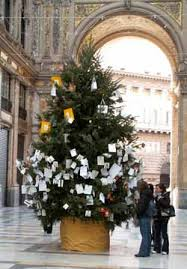 Wish Tree Naples Life Death U0026 Miracle
