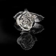 silver roses day gold dipped s fischer s jewerlry