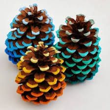 add a pop of color to some pinecones i how you still see the