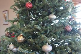 life lesson don u0027t cry over broken ornaments the pinke post