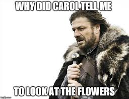 Look At The Flowers Meme - brace yourselves x is coming meme imgflip