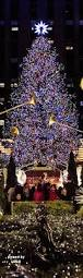 Outdoor Christmas Decorations New York by 17 Best Images About Christmas Tree On Pinterest Trees