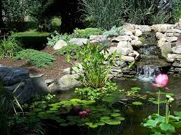 Backyard Pond Ideas With Waterfall Triyae Com U003d Beautiful Backyard Ponds Various Design Inspiration