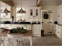 how much do new kitchen cabinets cost kitchen cabinet finishes