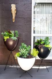 Modern Wood Planter by Top 25 Best Modern Outdoor Decor Ideas On Pinterest Front Gates