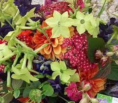 order online traditional cottage garden flowers in norfolk