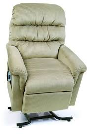 Chairs For Elderly Riser Recliner 29 Best Lift Chairs Images On Pinterest Leather Recliner Lift