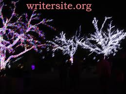 Zoo Lights Phx by December 2013 Writer Site