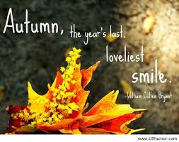 Autumn Memes - the last smile autumn quotes us humor image 897665 by imfunny