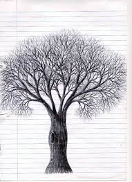 a biro drawing of a tree by nightshadeniki on deviantart