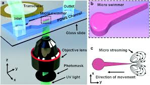 acoustic actuation of bioinspired microswimmers lab on a chip