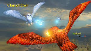 clan of owl android apps on google play
