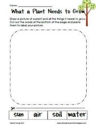 collections of plant worksheets for preschool bridal catalog