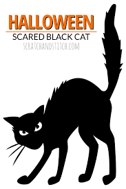 halloween cat silhouette background halloween pumpkin and black cat royalty free stock photo image 8