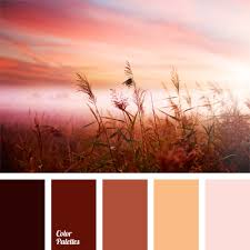 collection of image palettes color combinations ideas online