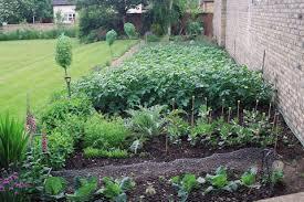 marvelous home vegetable garden design decor ideas dining room