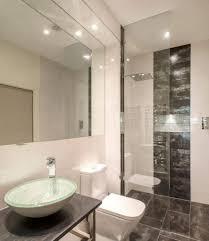 Basement Bathroom Ideas Pictures Basement Bathroom Design Ideas 19 Basement Bathroom Designs