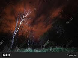 spirit halloween gainesville fl horor night
