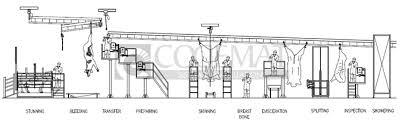 slaughterhouse floor plan dehiding machine eviscerating platform cattle