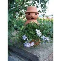 madhouse family reviews flowerpot man garden ornament