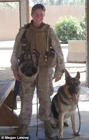 best 25 military dogs ideas on pinterest working dogs police